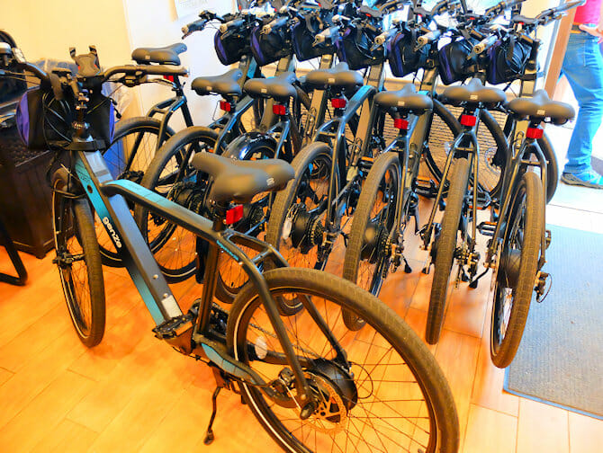 Facilities for Disabled People in New York - Electric Bike
