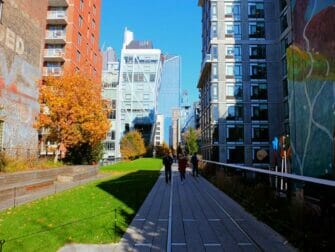 High Line Park in New York Surrounded by Buildings