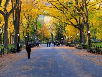 Central Park Movie Sites Walking Tour - The mall