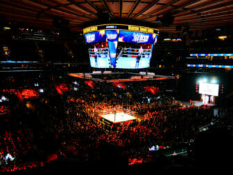 WWE Wrestling Tickets in New York Audience
