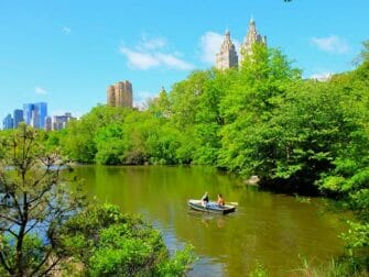 Rowing Boat Rental in Central Park - Couple Rowing