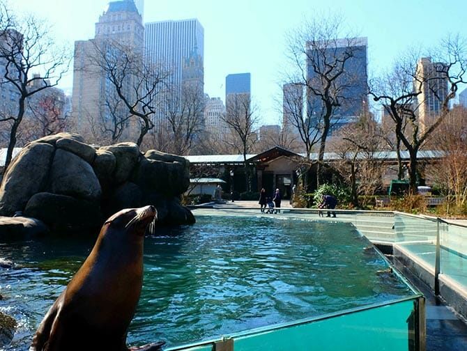 Central Park Zoo Tickets