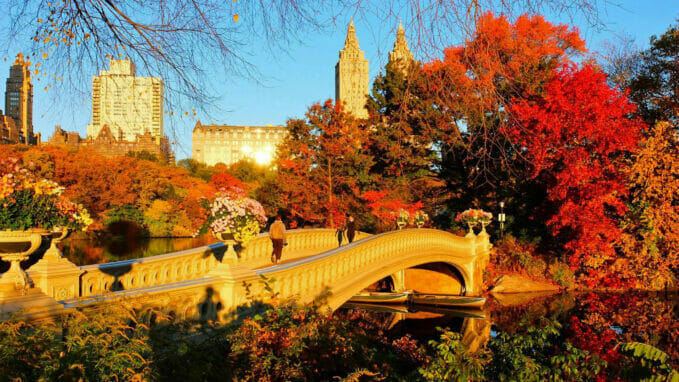 Autumn in Central Park Zoom