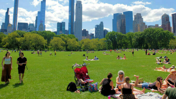 Great Lawn Central Park Zoom