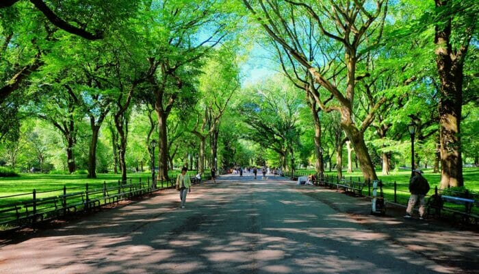 Mothers Day in New York The Mall at Central Park