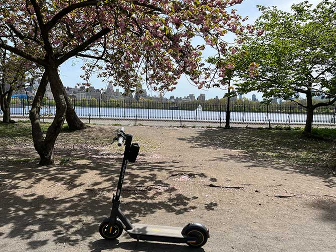 Electric scooter rental in New York E scooters